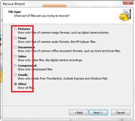 format file suara cara mudah merecovery data ikan perak