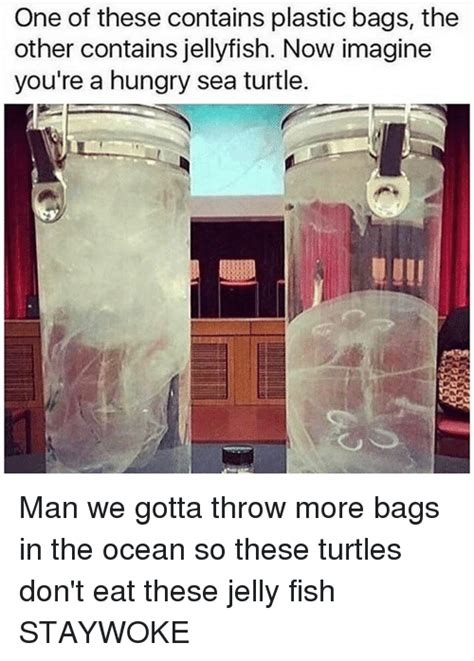Totes Jelly Meme - one of these contains plastic bags the other contains