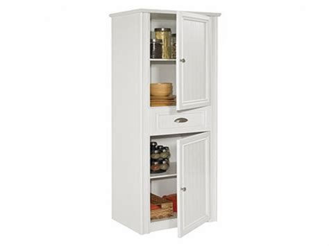 Big Lots Kitchen Cabinets by Big Lots Storage Cabinets Storage Designs