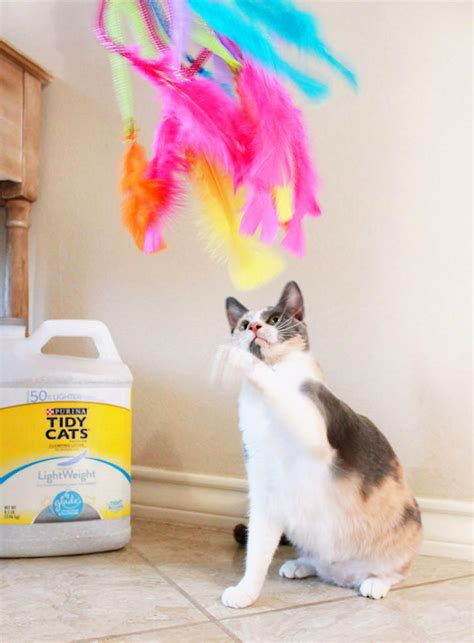 Diy Cat Toys From Marmalade by Diy Feather Cat Toys A Bigger