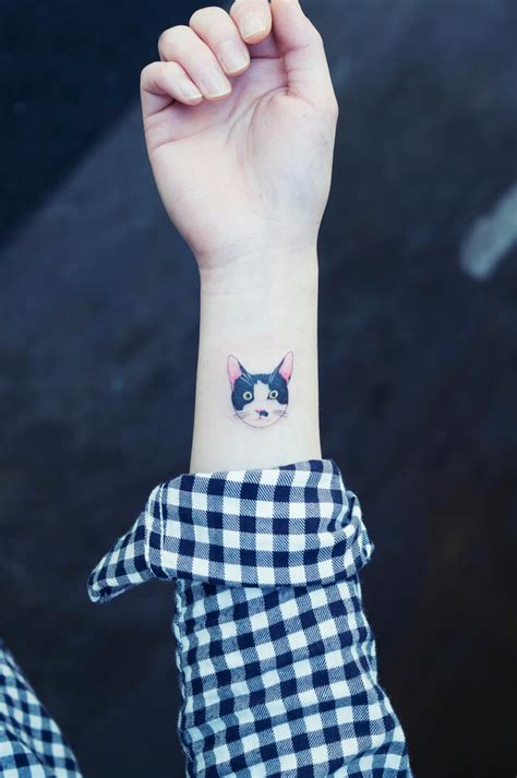 tattoos illegal in korea cat tattoos are probably the cutest way to the