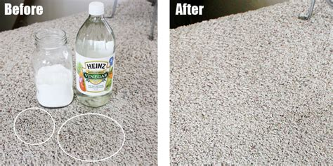 how to remove urine smell from carpet how to remove urine from carpet naturally soorya carpets