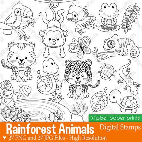 rainforest animal templates rainforest animals digital sts clipart rainforest
