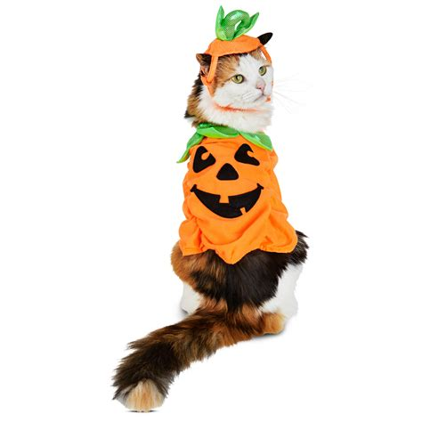 S A L E Only best costumes for dogs ideas only on