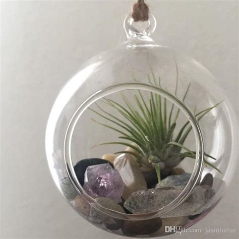 Dijamin Glass Dome Globe 8cm For Terrarium 8 cm 10 cm creative hanging glass vase succulent air plant display terrarium hanging live plant