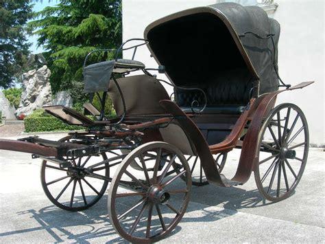 cavalli carrozze carrozze e cavalli a disposizion