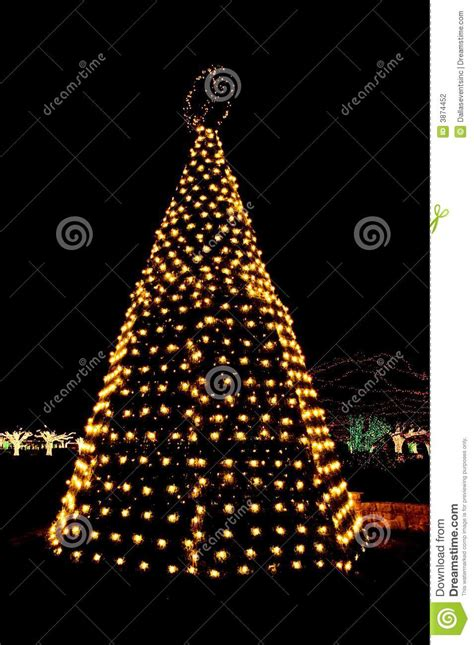 outdoor christmas tree lights stock photo image 3874452