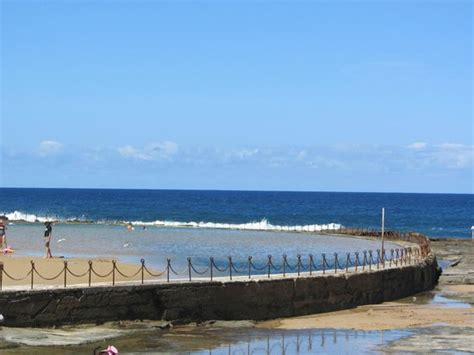 canoes newcastle canoe pool low tide picture of newcastle ocean baths