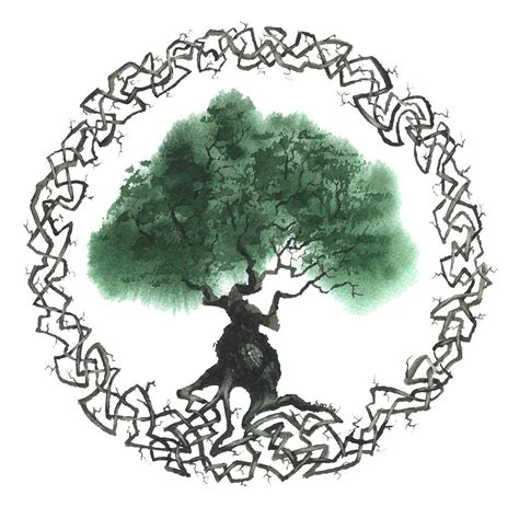 tree symbols celtic tree of life symbol www imgkid com the image