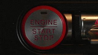 pulsing start button   mustang beats  times  minute  heart   resting pony
