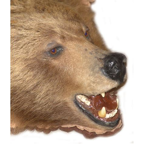 grizzly rug with grizzly rug