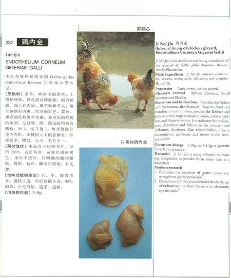 Ji Nei Jin page title