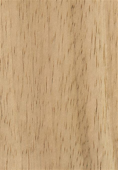 Colors For Home Interior by Rubberwood The Wood Database Lumber Identification