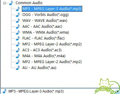 audio format list m4a to mp3 converter