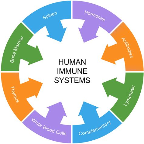 immune how your defends and protects you bloomsbury sigma books about the immune system roscara