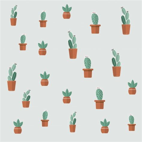 wallpaper cactus plants pot wallpapermaiden
