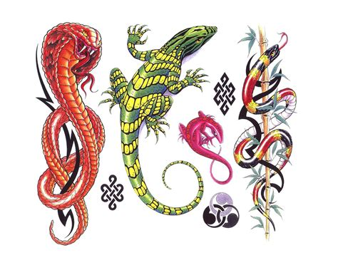 lizard tattoos designs lizard images designs