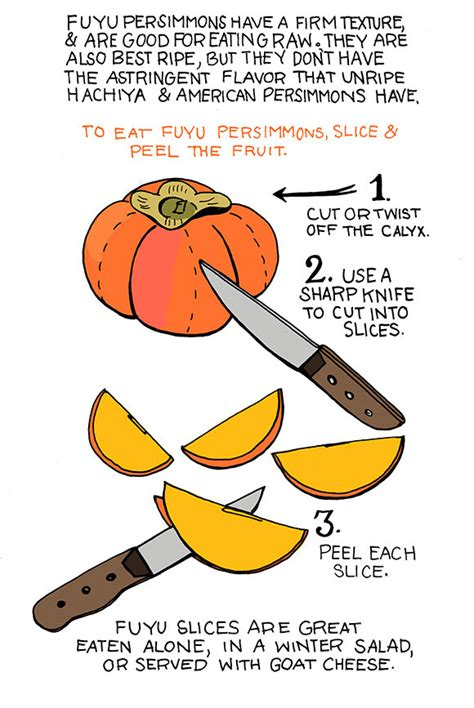 how to persimmons earth s general store