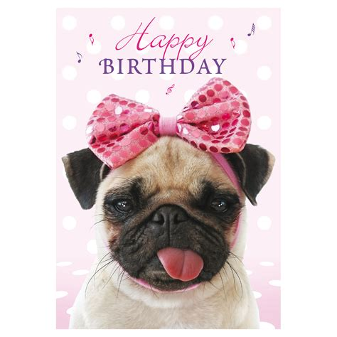happy birthday pug card cheeky pug sound bites musical cards buy from animal gift club