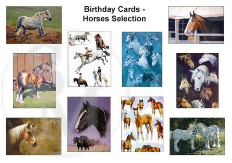 Birthday Cards With Horses On Them Pack Of 10 Assorted Horse And Pony Birthday Cards