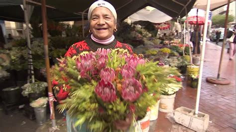 Flower Delivery Cape Town South Africa - flower market cape town south africa hd stock video