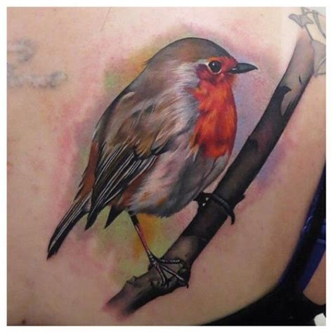 small robin tattoo robin by phatt german robin realism