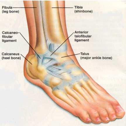 ankle pain causes, symptoms, treatment, remedies