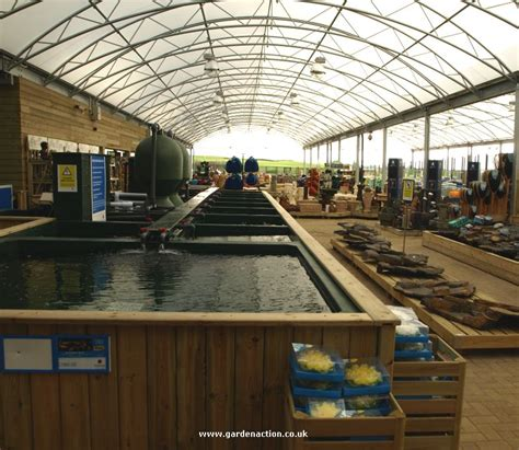 Dobies Garden Centre by Part Two Of Our Dobbies Chesterfield Review