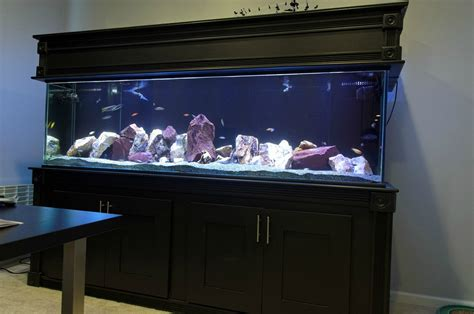 Reclaimed Wood Divider by How To Make Professionally Designed Fish Tank Ideas