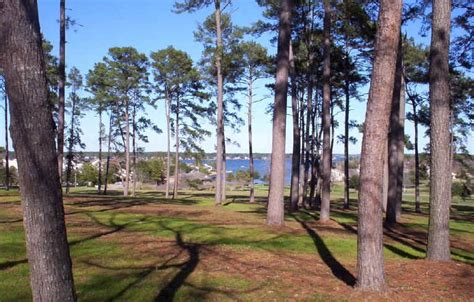 Cabins On Lake Conroe by Lake Conroe Cabins