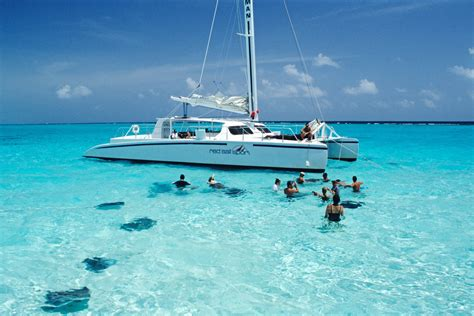 cockatoo catamaran grand cayman shore thing summertime delights on the cayman islands
