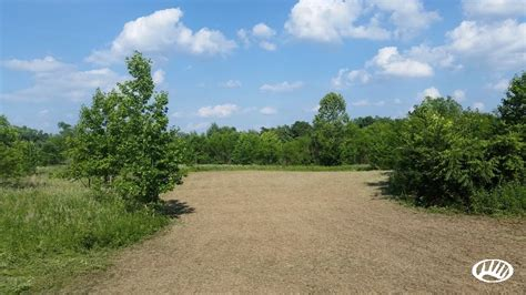 Secluded IL Hunting Property Surrounded By Shawnee National Forest   Whitetail Properties