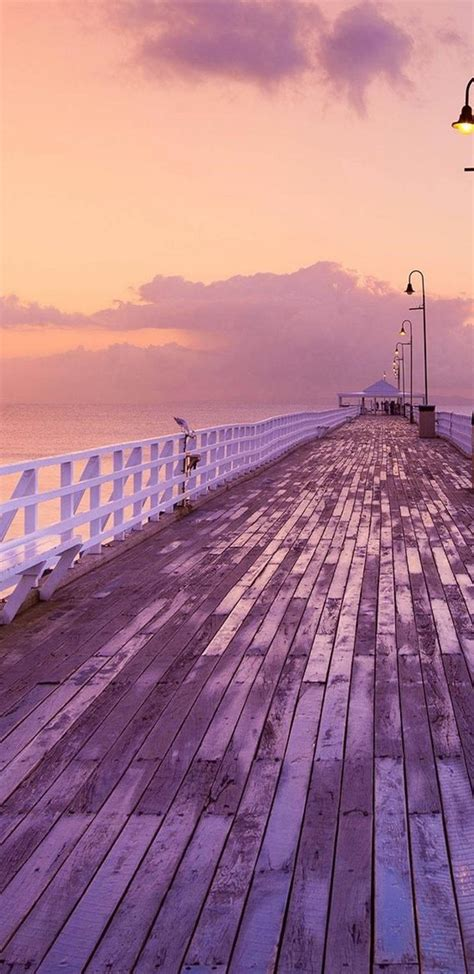 pier nature img wallpaper