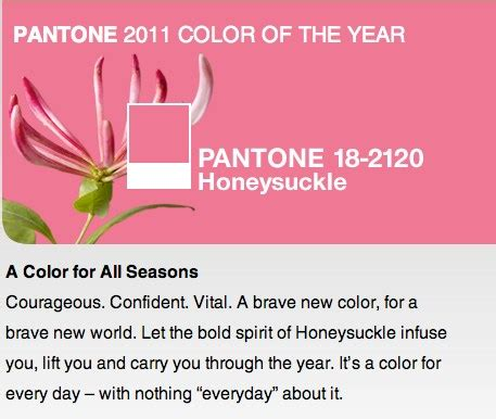 pantone unveils color of the year for 2010 pantone 15 5519 2011 color of the year confettistyle