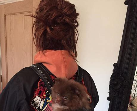 s got a puppy jesy nelson s got a new puppy and he s adorbs this week s must see photos from the