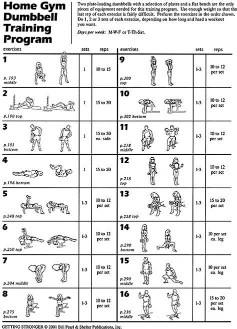 dumbbell training  sample training program