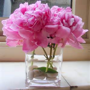 Pianese Flowers Peonies Happy Marriage The Secret Language Of Flowers