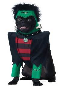 Halloween Decorations For The Home frankenpup dog costume