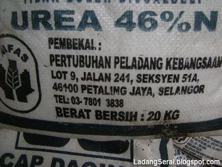 Benih Serai Peha Ayam ladang serai lemongrass farm malaysia keperluan dan