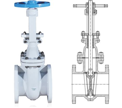 gate valve cross section gate valves steel gate valves cast steel valves forged