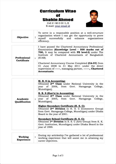 format for curriculum vitae pdf gallery of sle of curriculum vita