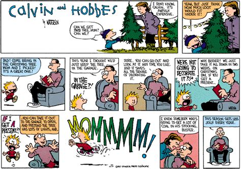 calvin and hobbes comic strip tv tropes