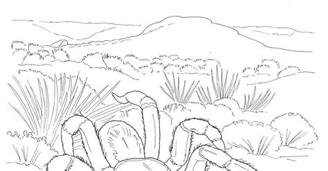 desert coloring pages sketch coloring page