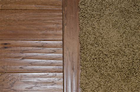 Wood Floor To Carpet Transition by Wood Floor To Carpet Transition Carpet Vidalondon
