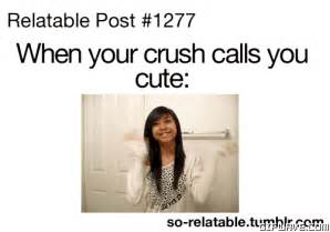 Cute Memes For Your Crush - relatable quotes about crushes quotesgram