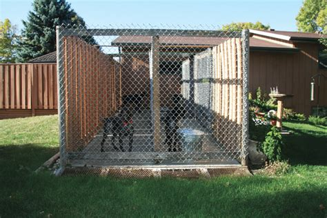 how to build a nice dog house how to build the perfect dog kennel gun dog magazine