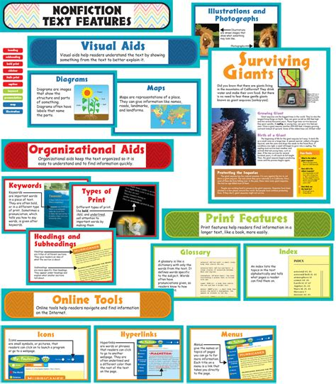layout features of an information text nonfiction text features bulletin board set grade 1 5