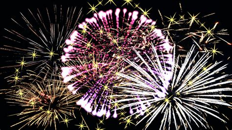 flower for new year 2016 free images flower pyrotechnics new year celebrate