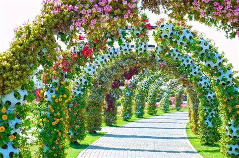 Garden Location Miracle Garden Foto Di Dubai Miracle Garden Dubai
