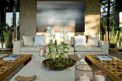 decorar a sala plantas 15 salas decoradas plantas e a escolha do local